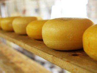 formaggio naturale